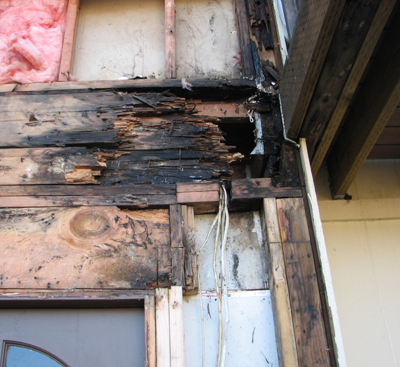 how to treat dry rot termites, dry rot termites treatment, how to kill dry rot fungus, termite wood repair, dryrot repairs, wood repair, custom wood repair, termite damage, local carpenter, contractor wood repair, termite damage repair, termite wood repair, exterior wood repair, home wood repair, dryrot repair, patio wood repair, wood damage repair, dryrot damage, dryrot damage repair, termite damage repair